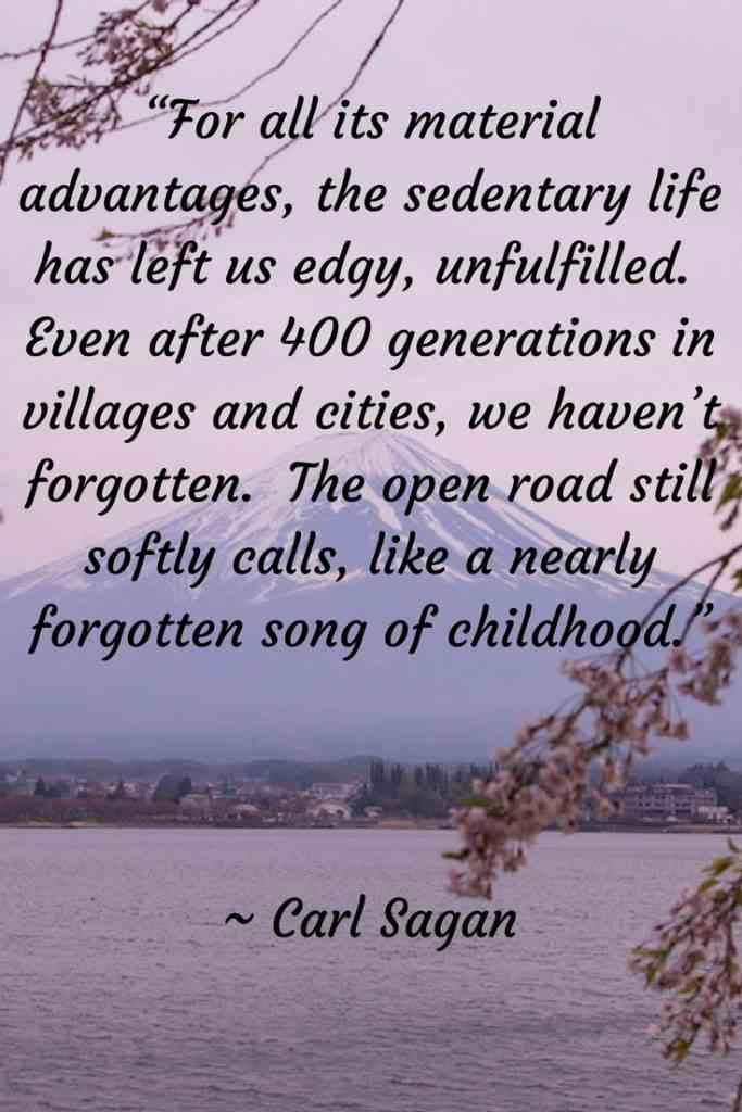 Carl Sagan Travel Quote