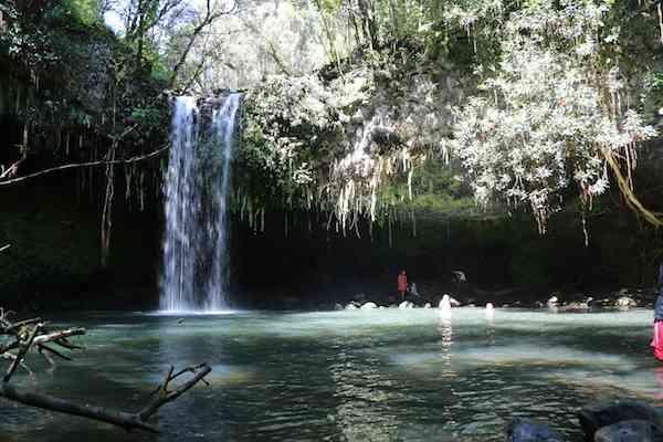 Twin Falls on Road to Hana, Maui