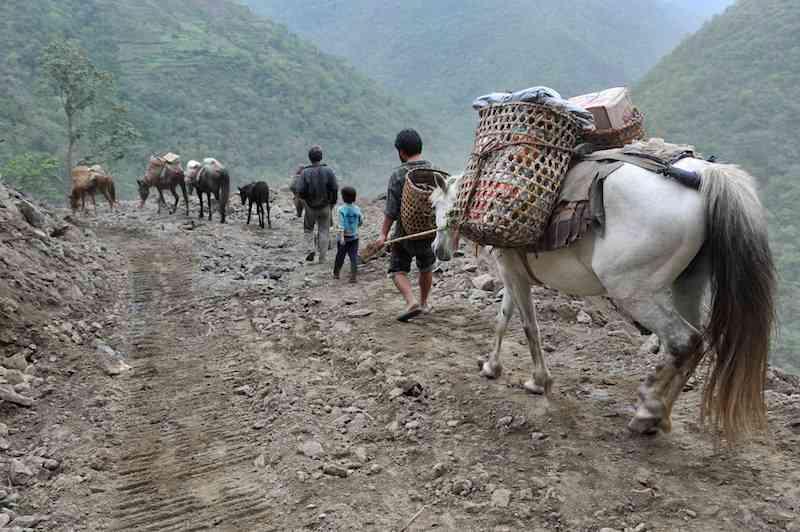 Bhutan Farmer