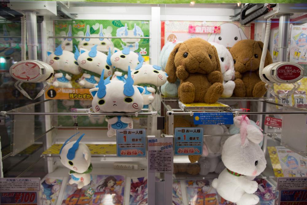 Akihabara Rabbits