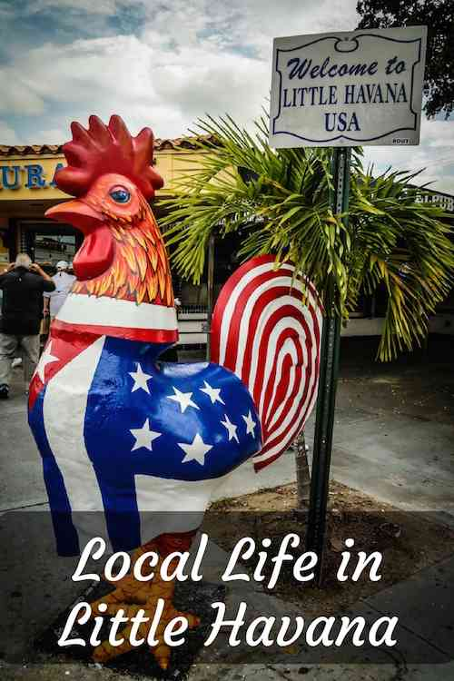 Little Havana Pinterest