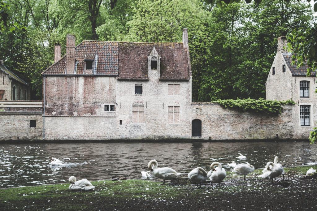 Bruges history