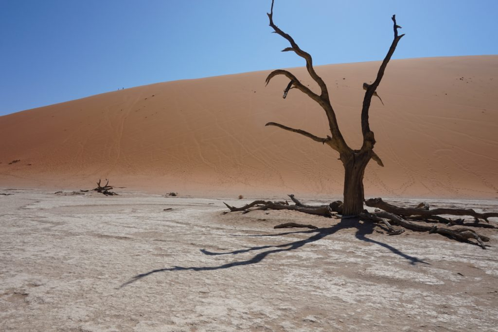 Adventures in Namibia