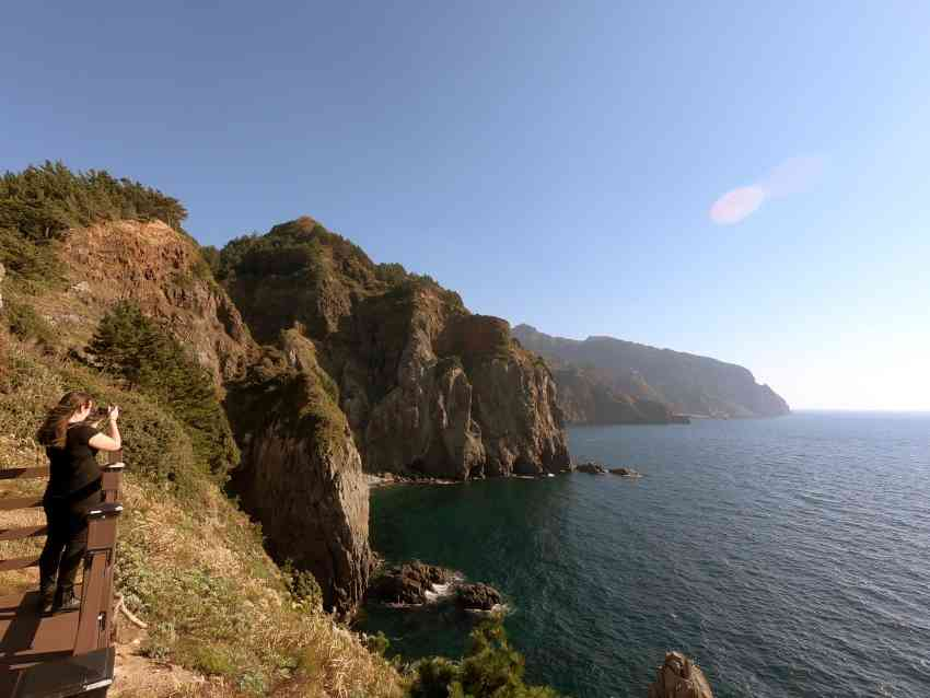 Things to do in Ulleungdo, South Korea