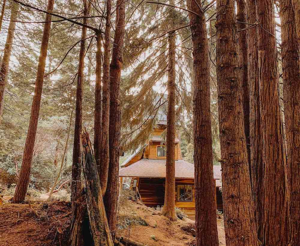 Northern California Airbnbs - water tower in forest